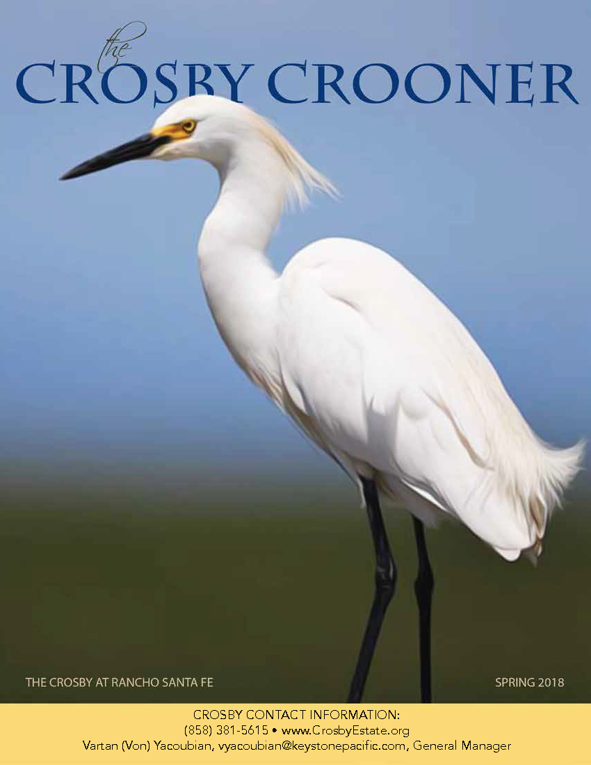 Spring 2018 Crosby Crooner Cover